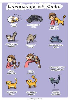 Language of Cats by kangel