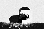 Elephant rain by Because111