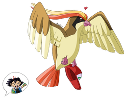 Pidgeot by MeoWmatsu