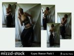 Gypsy Dancer pack 1 by mizzd-stock