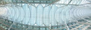 Ceiling Panorama by marcosllm50