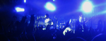 Panic At The Disco Live 02 by tabby-like-a-cat