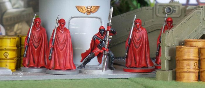 Imperial Assault Royal Guards by TK2655