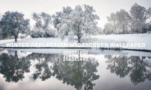 Winter Reflection Widescreen Wallpaper by solefield