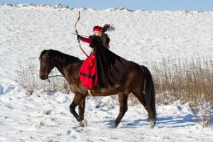 Horseback Archery On The Hunt Stock by LuDa-Stock