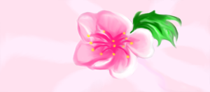 japanese flower by rainbowpanther2