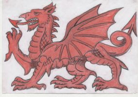 Welsh Dragon. by Bunpire