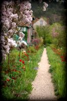 Flowery Path by alahay