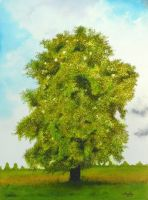 Sycamore by aakritiarts
