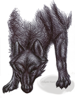 The wolf... by ookami-kaen