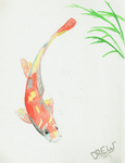 Watercolor Koi by SoftLineSketches