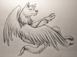 sketch: winged-wolf by Marshcold