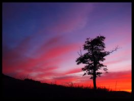 Sunset from the hilltop by Discomax