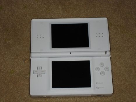 DS Lite opened up by Earthbender-Style