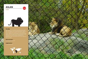 Lion Pictogram - Sign by n