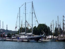 TSR - Eendracht by The-Black-Panther