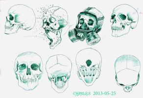 Study of skulls by AimlessStruggles
