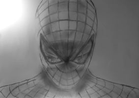 The amazing Spider-Man by dragonvic