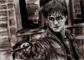 Harry Potter in the Deathly Hallows part 2 by Williaaaaaam