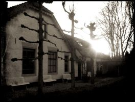 An old Dutch farm... by ansdesign
