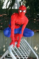 Cos and Effect '11 - Spiderman by JeiArsenault