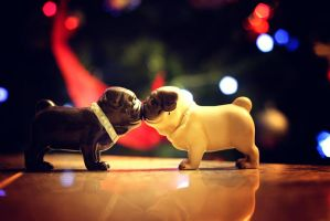 Puggy Christmas by garnettrules21