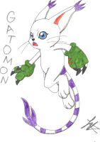 Gatomon by valkdaombras