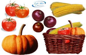 Vegetables 2 - PNG by lifeblue
