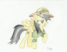 Daring Do by MoonlightFL