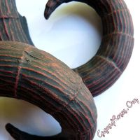 Aries in Black and Red Finish by che4u