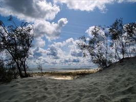 Dunes 4 by rici66