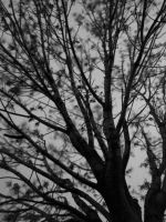 Branches of Evil by AbdoHad