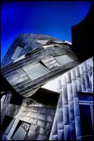 Abstract Exterior - Gehry III by krasblak