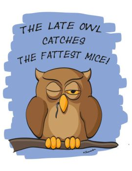 The Late Owl Catches The Fattest Mice! by Sharandra