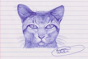 Cat In Blue Pen by Brightclaw1