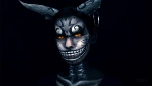 Cheshire Cat Makeup from Alice: Madness Returns 1 by VisualJamie