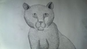50% done. life drawing of cat! by rwmtiger