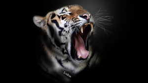 Tiger Wallpaper by SlitasDesign