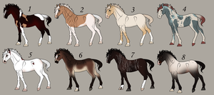 --Random Adopts by Equine-Integration
