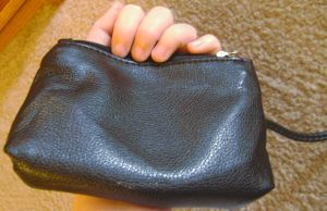 Irken purse back by Ms-Mordant