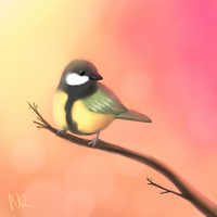 Great Tit by mikaiya-chan