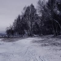Premade bg - Snowy Times by Lunia-Stock