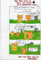 Warrior cats.. The weird truth by Step-kitten