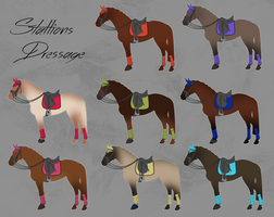 OLD - ELS Horse Dressage Equipment - Stallions by michelle222
