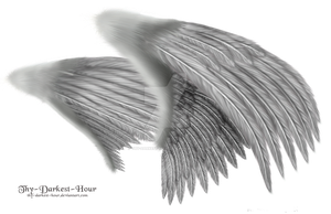 Dual Silver Wings - LARGE PSD by Thy-Darkest-Hour