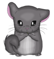 :: Chinchilla :: by flowertigers