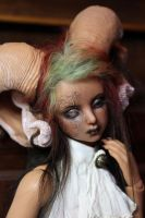 Faun face-up by Follow-the-Wind