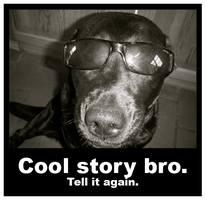 Cool story bro. Tell it again. by Evenio