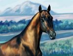 Akhal-Teke by Purple-Ephemerality