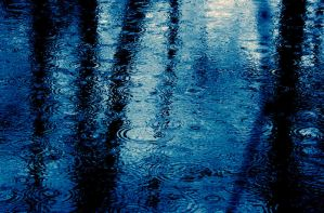 rainy day by untitled55